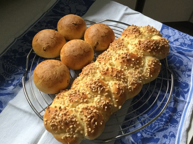 Hefezopf  und Rosinenbrötchen habe ich heute mit dem lievito Madre gebacken.