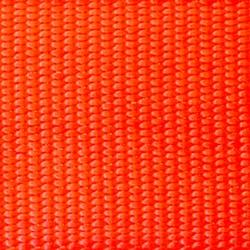Hot Orange.jpg