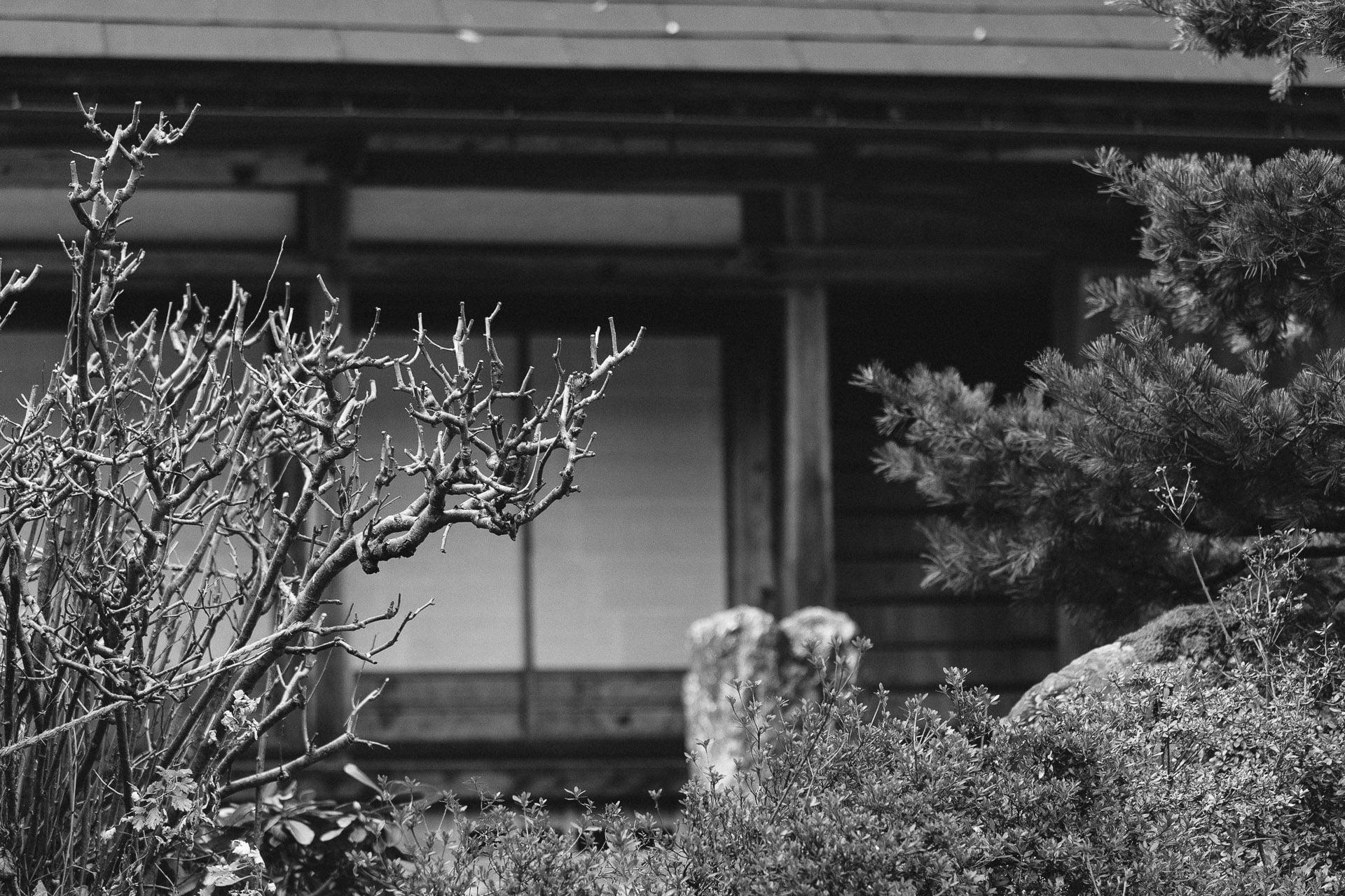 1124Gokayama079.jpg