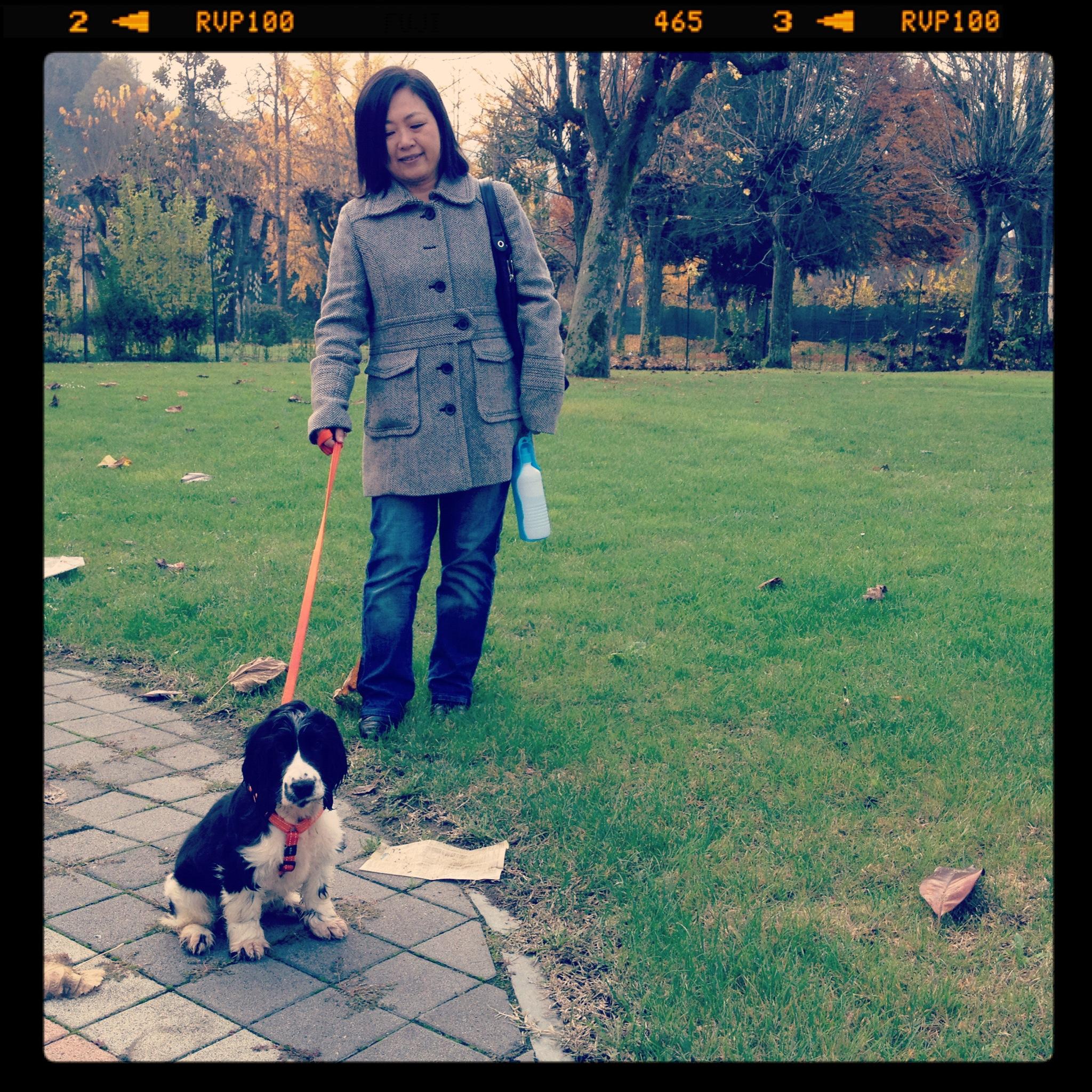 2011-11-12 10.56.44.jpg