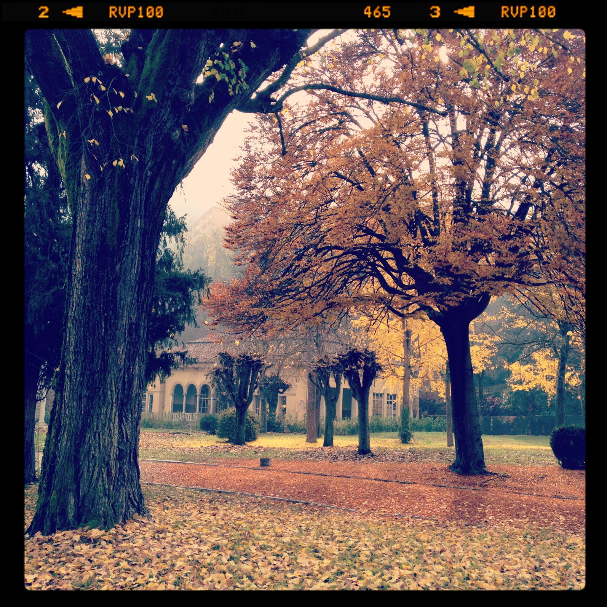 2011-11-12 11.04.51.jpg