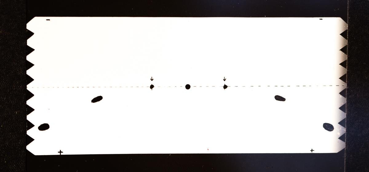 megan-magill-1702.jpg