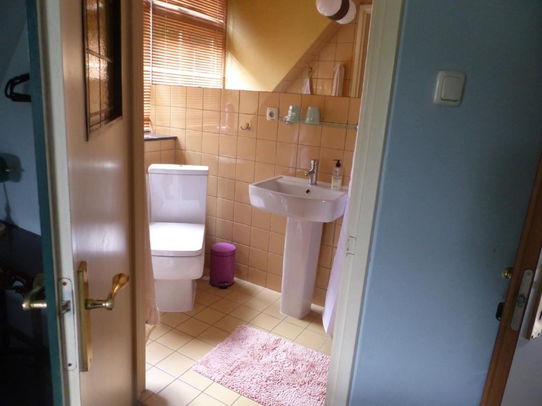 eigen badkamer met douche , wastafel en toilet -