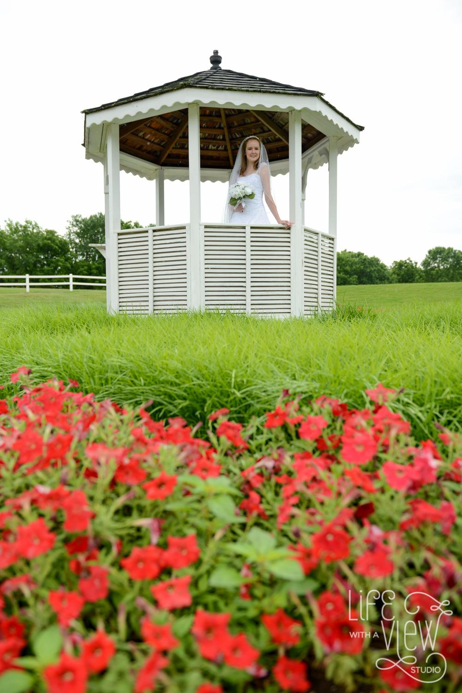 Gaylord-Springs-Wedding-2.jpg