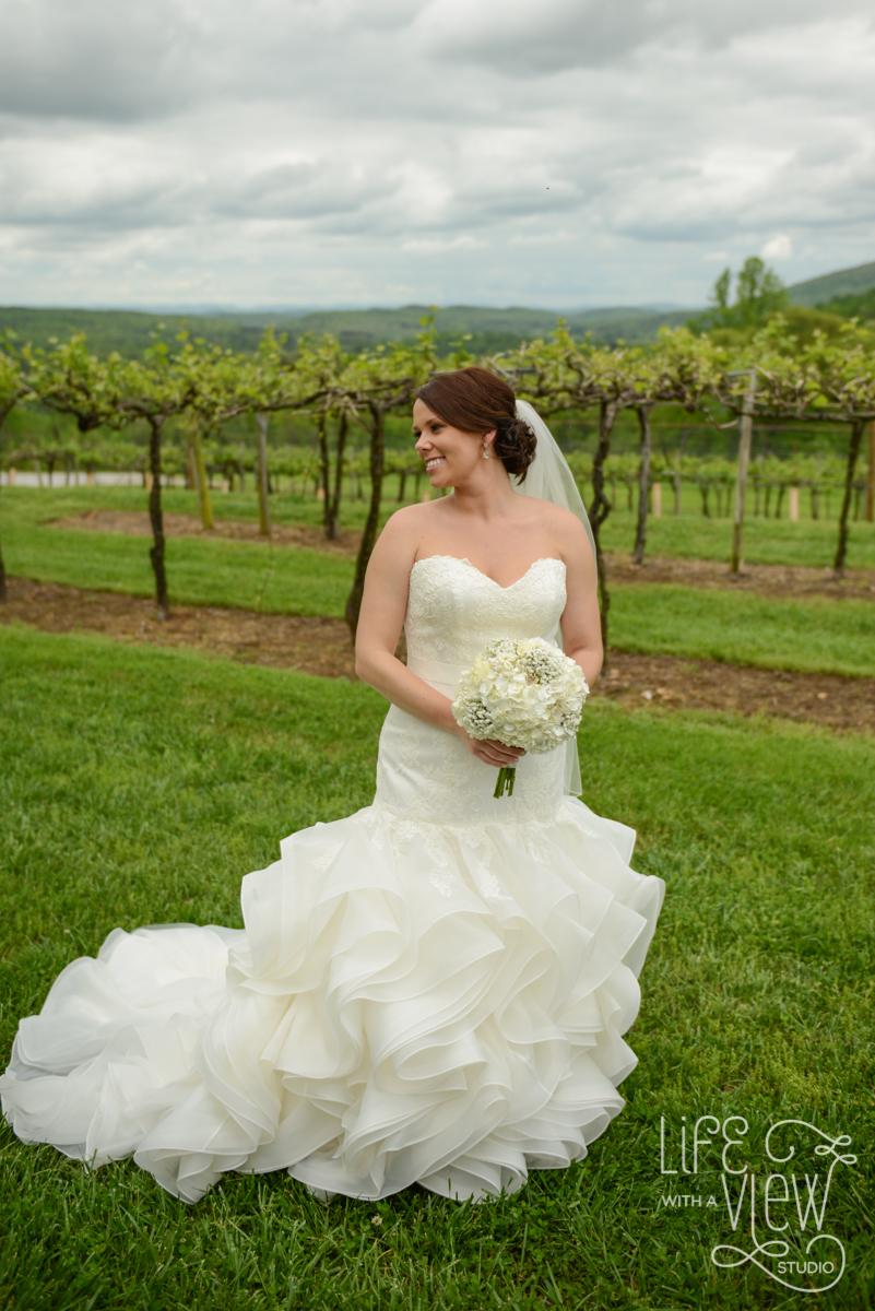 Saltich-Wedding-26.jpg