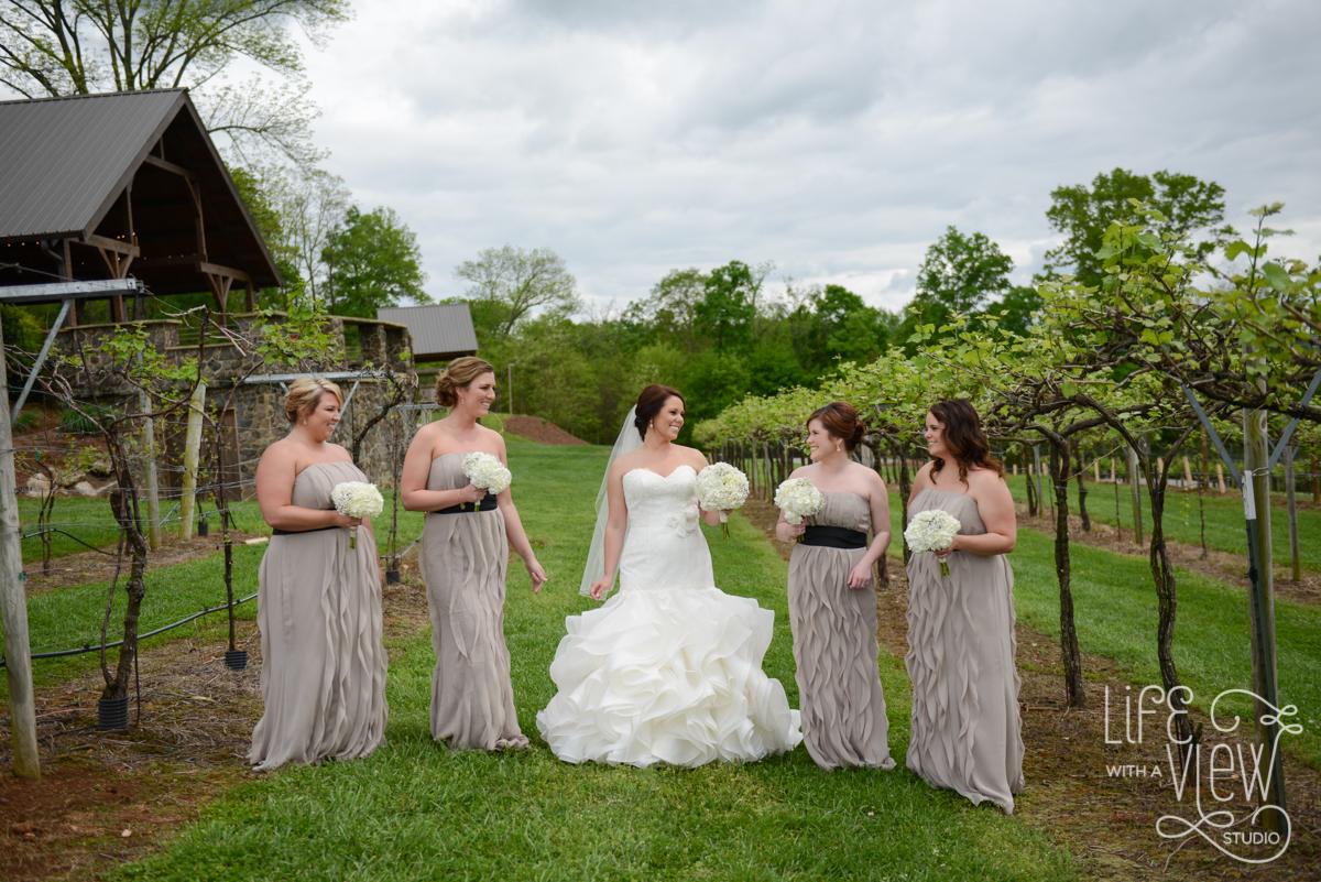 Saltich-Wedding-29.jpg