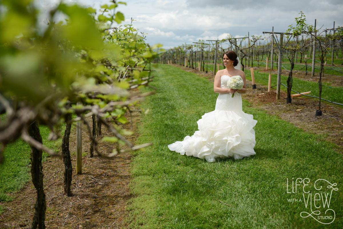 Saltich-Wedding-31.jpg