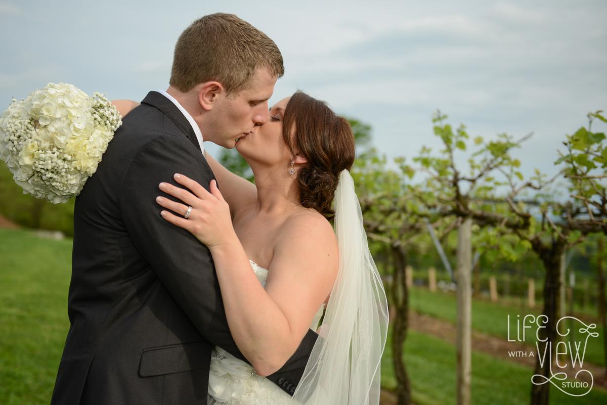 Saltich-Wedding-85.jpg