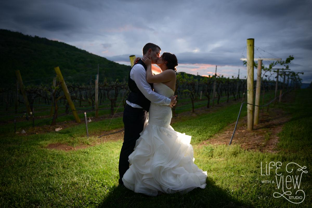 Saltich-Wedding-141.jpg