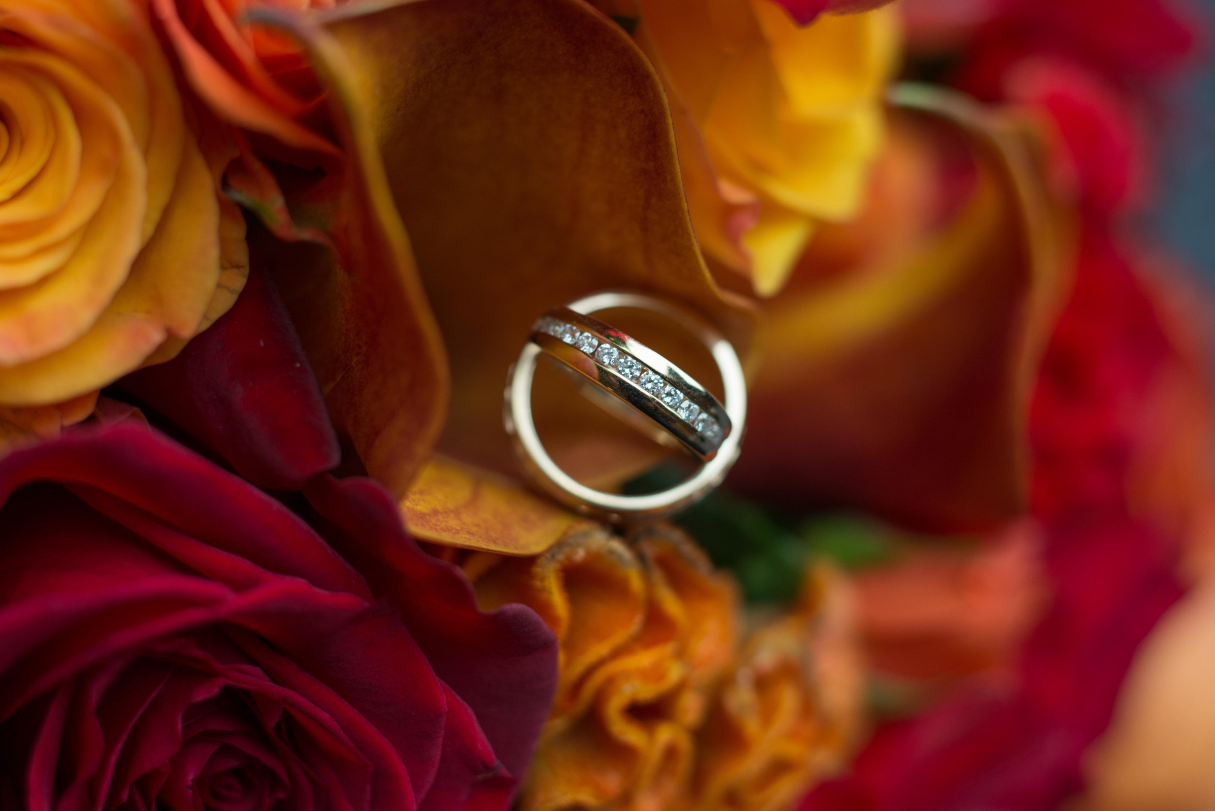 00001_Adams-Wedding-3.jpg