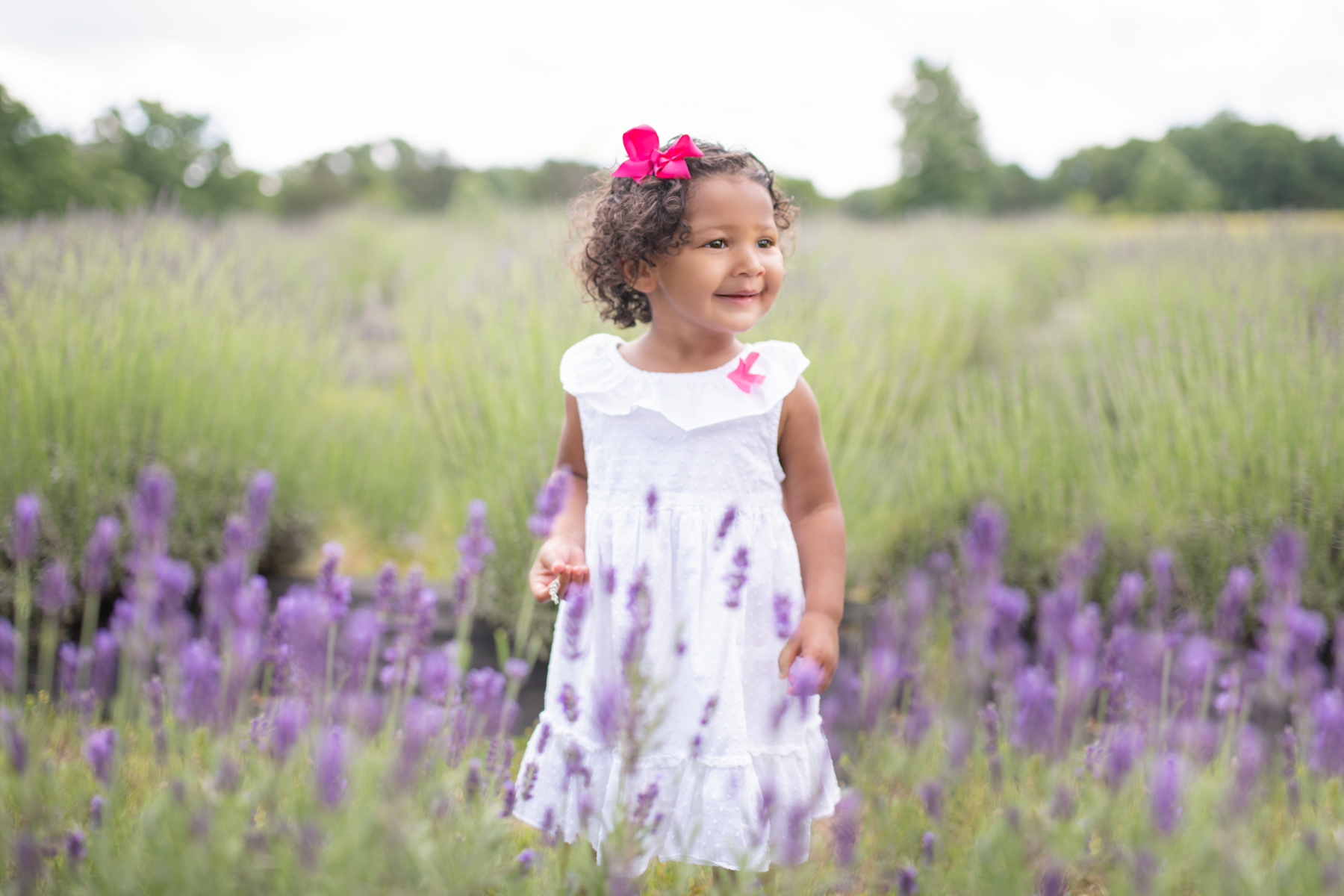 chattanooga lavender field mini session, baby photography chattanooga, chattanooga photography, chattanooga toddler photography, lookout mountain photography, lookout lavender, lookout mountain baby photography, chattanooga photos, chattanooga photography, baby photographer, toddler photographer, newborn photographer, lavender photography, lavender photos