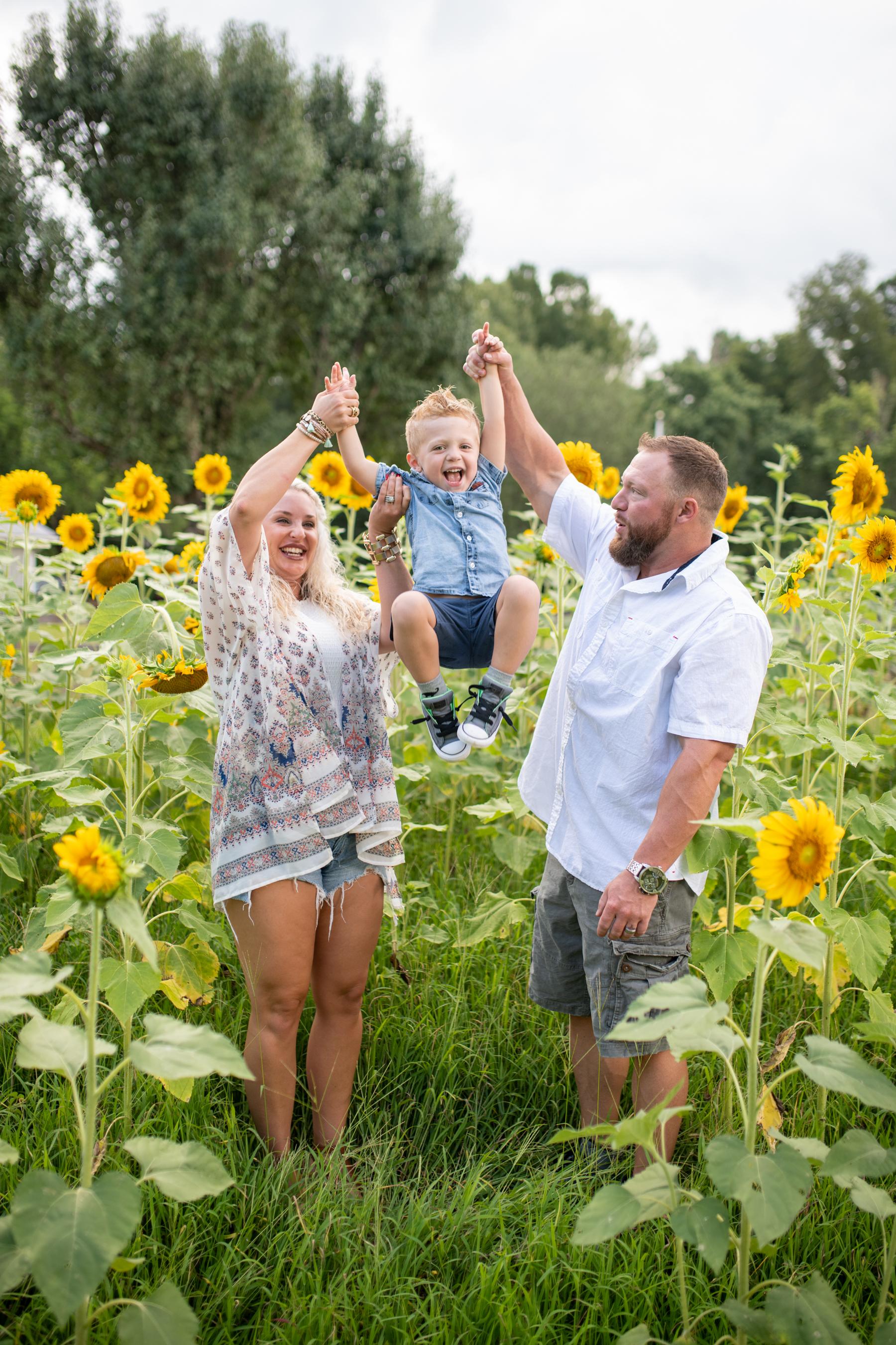 Sunflowers-Favs-1.jpg