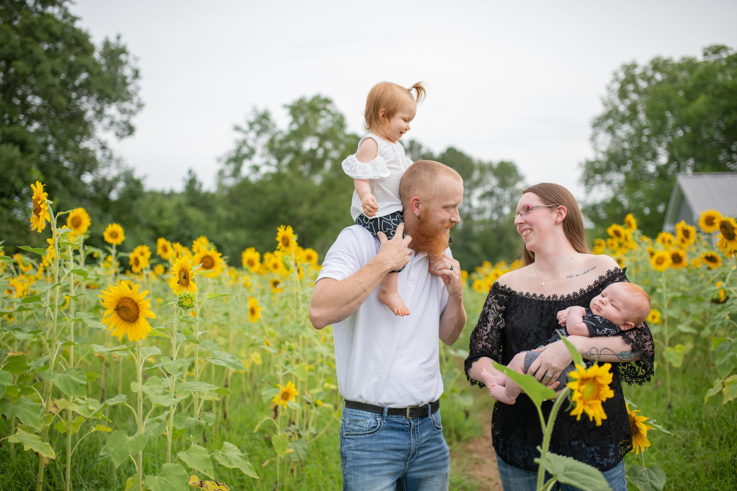 Sunflowers-Favs-7.jpg