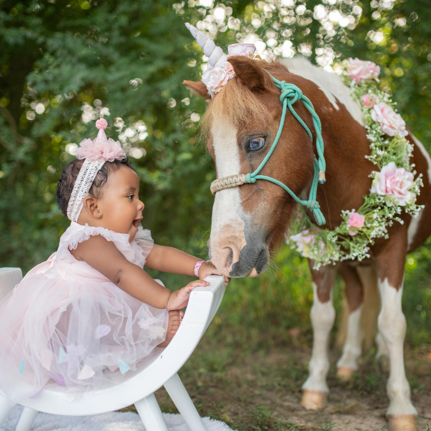 Chattanooga-Unicorn-Photos-3.jpg