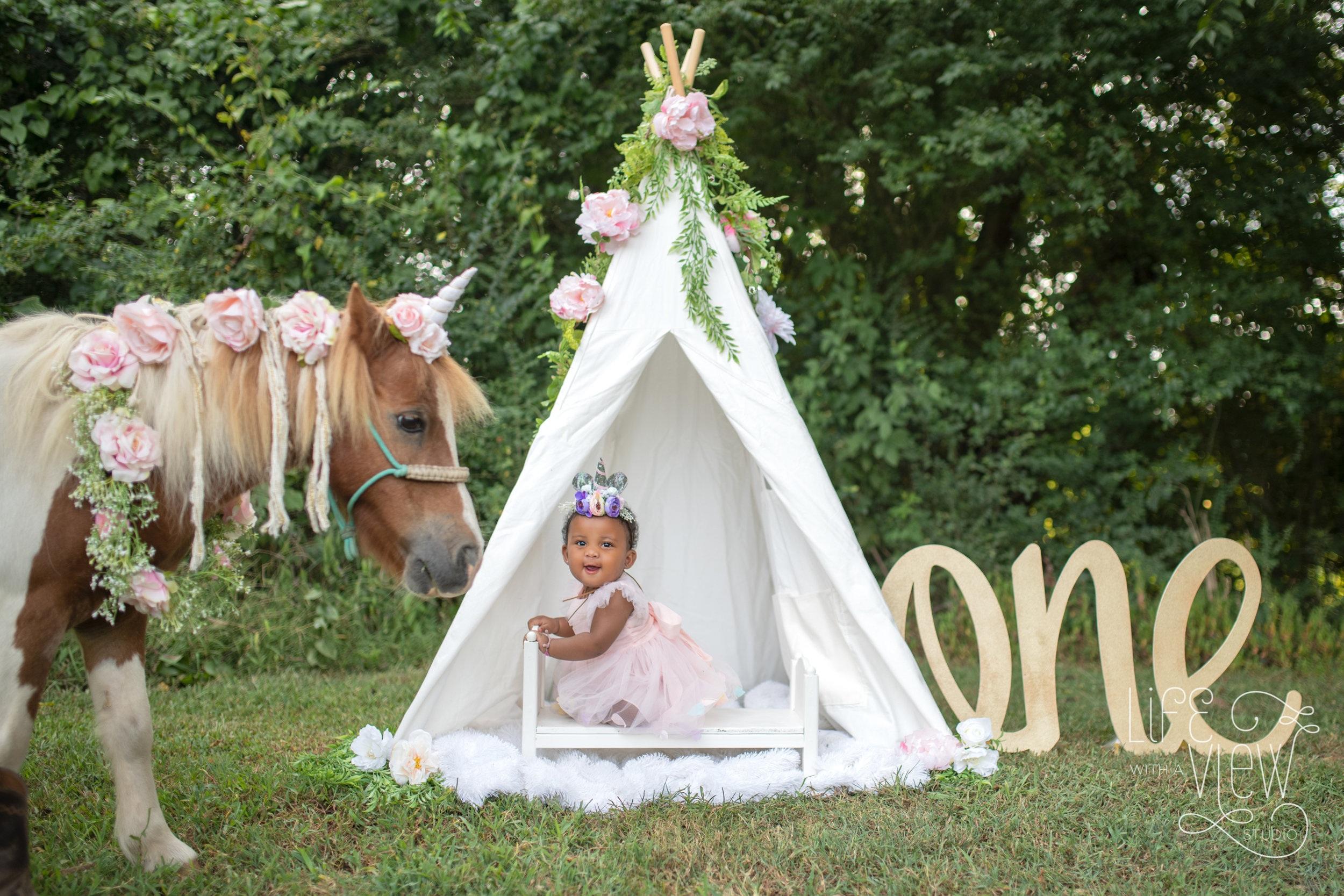 Chattanooga-Unicorn-Photos-1.jpg