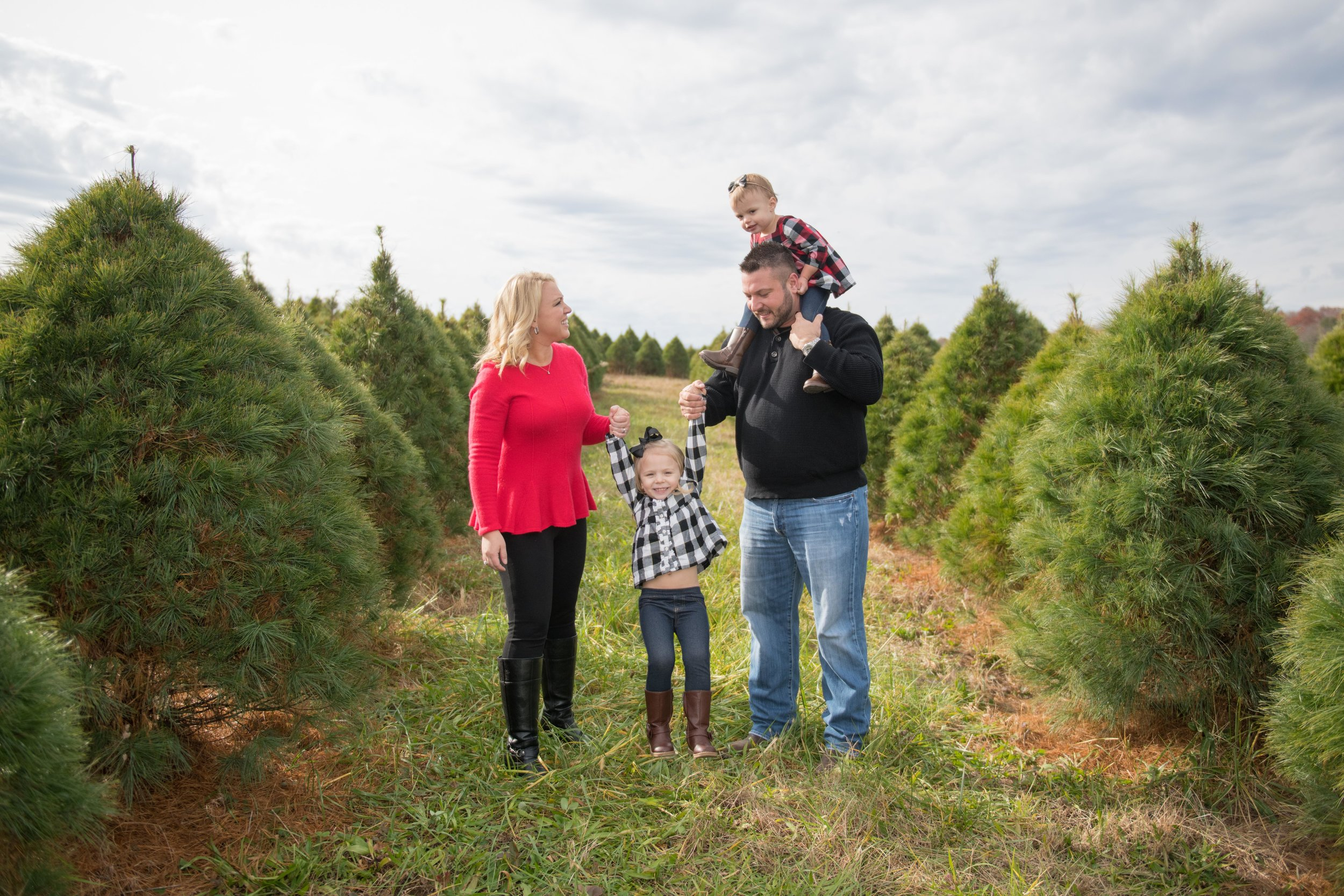 Christmas Tree Farm - Dec.1, 7-8 - Experience the magic of rows and rows of Christmas trees at this beautiful tree farm. Your kids or fur babies will have a blast running the endless rows of magical Christmas trees, trying to find the perfect tree.