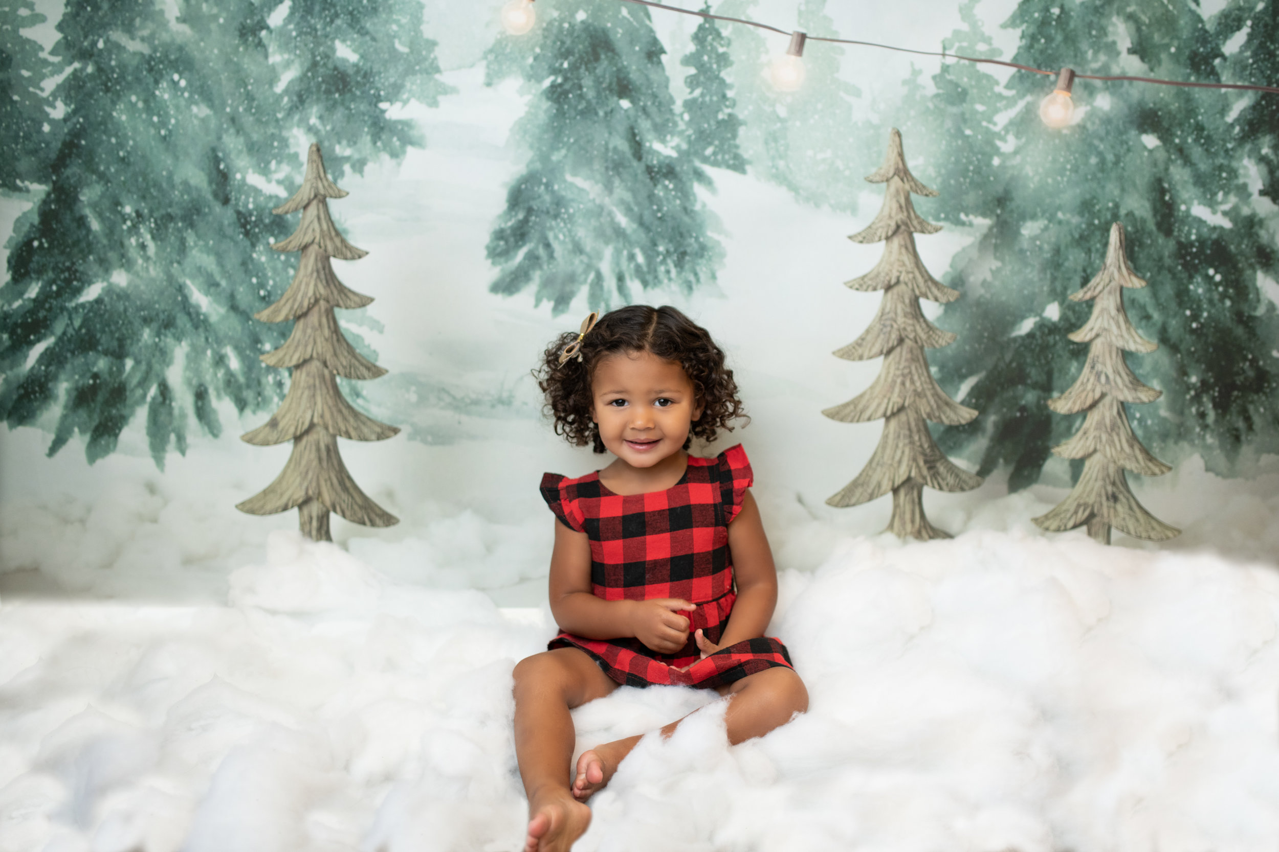 Snowy Studio Session - (Anytime in Nov. and Dec.)- We are bringing the magic indoors with our special studio snow sessions. We will have two sets to choose from: Winter Wonderland and Milk and Cookies for Santa. These sessions can be booked anytime in Nov. and Dec.
