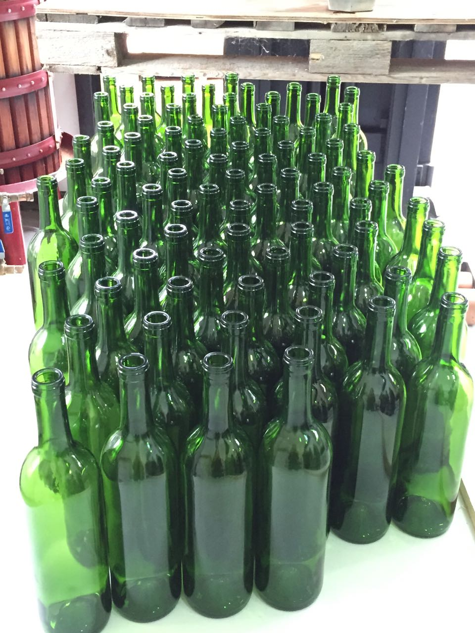 Prepared bottles for filling (Argon added)
