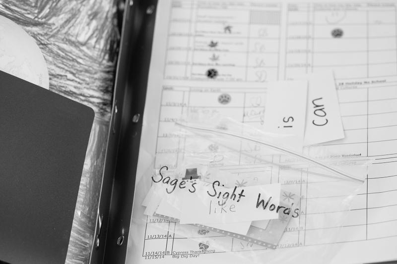 sage sight words pool