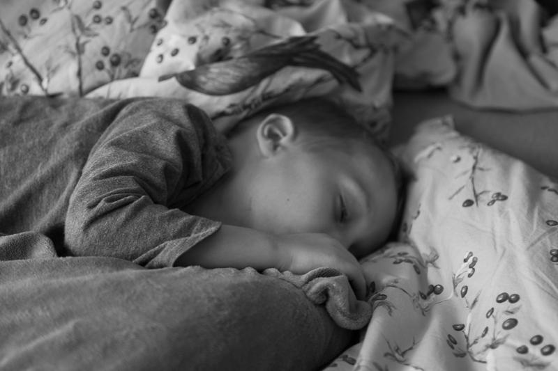 sage daybed sleeping