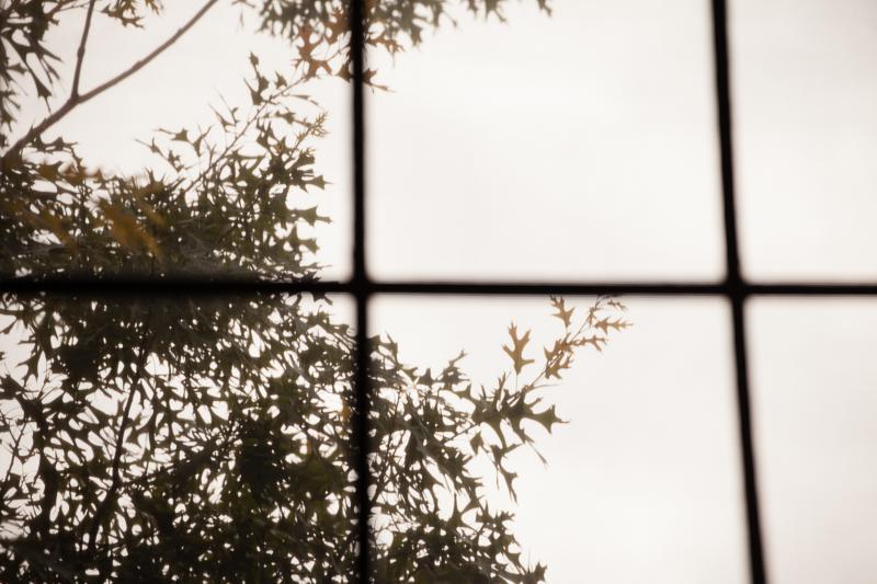 window 620