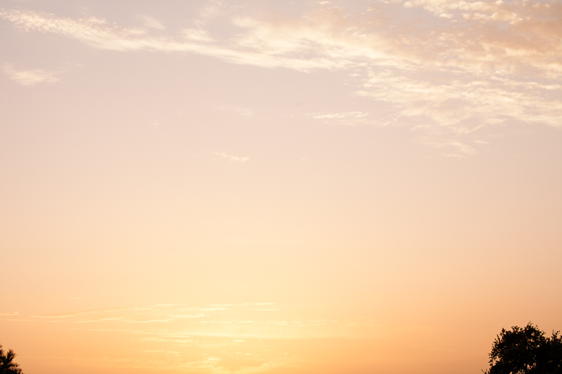 tccc sunset 709