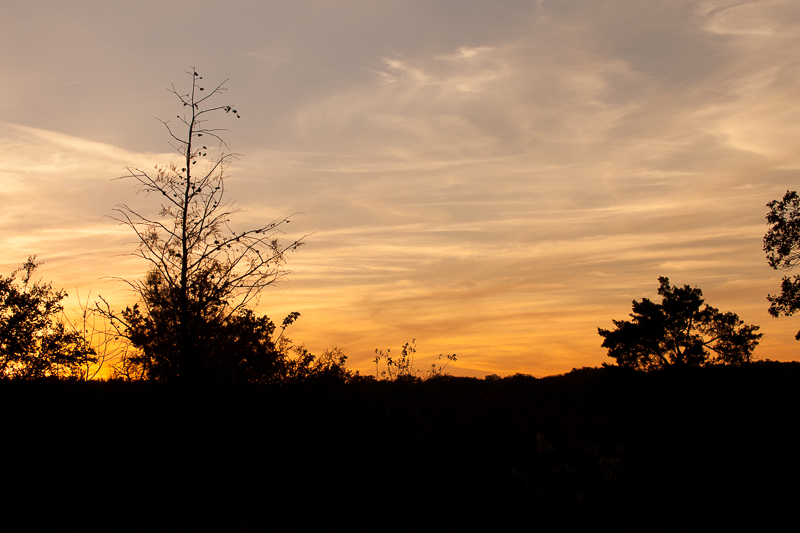 warm sunset 1210