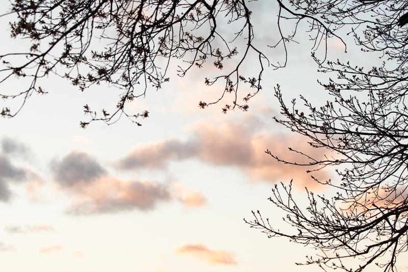 peach grey clouds