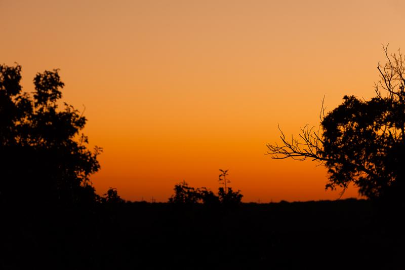 sunrise 111516
