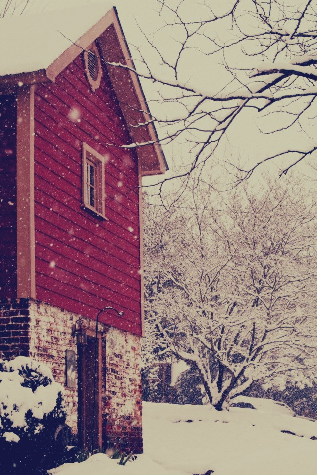 Winter view of cottage