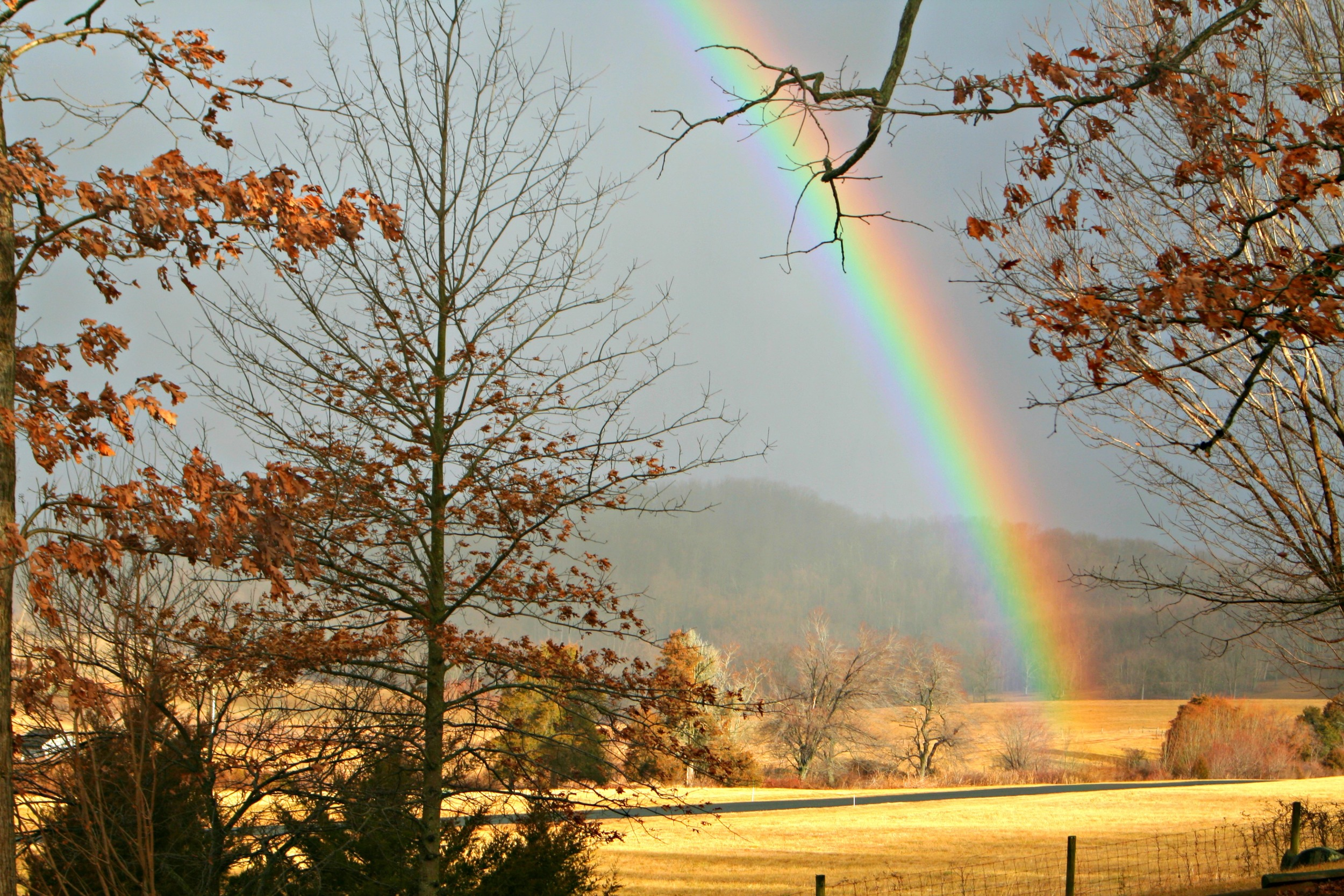 Rainbow seen from the Summer Kitchen Cottage