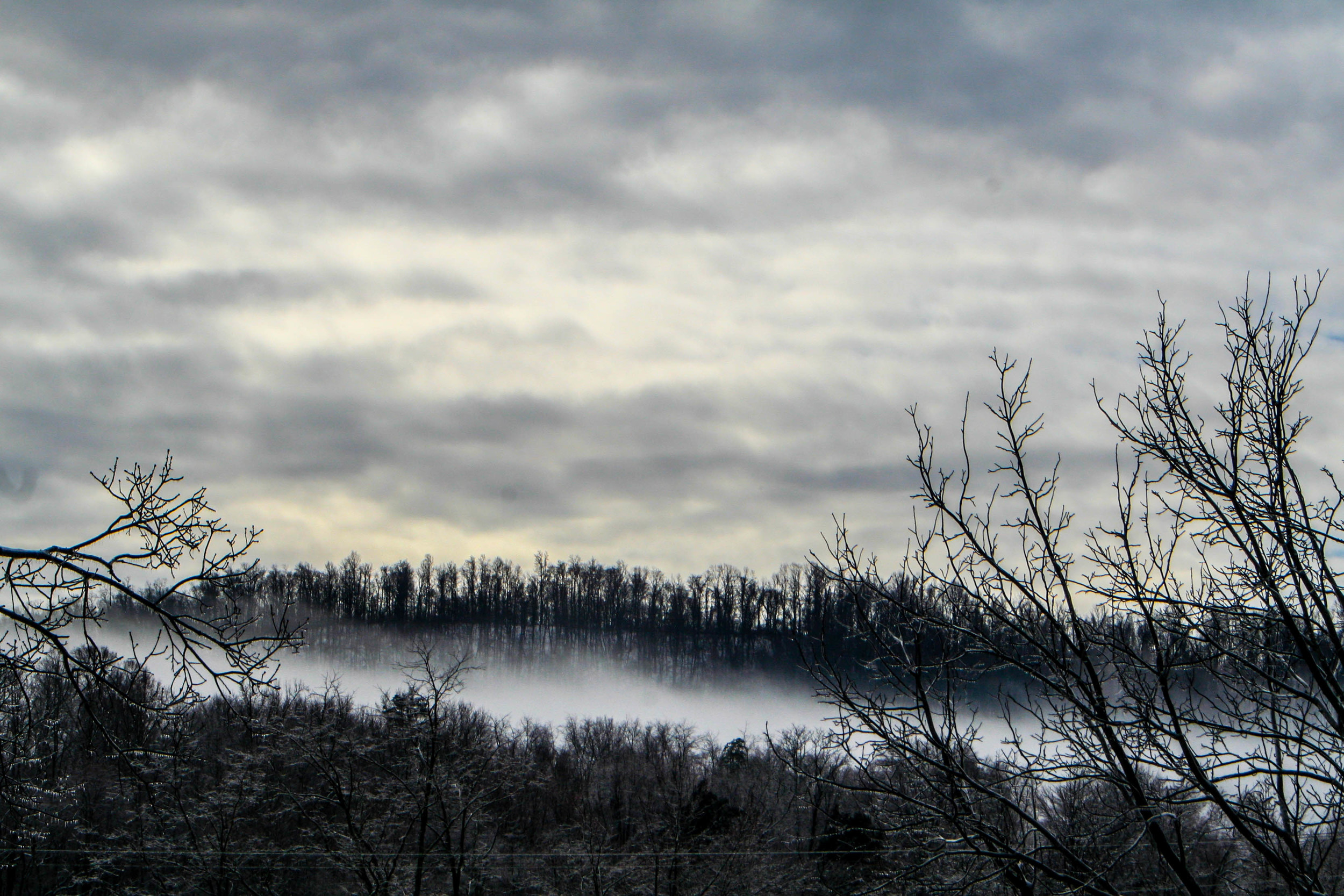 Ice and morning fog
