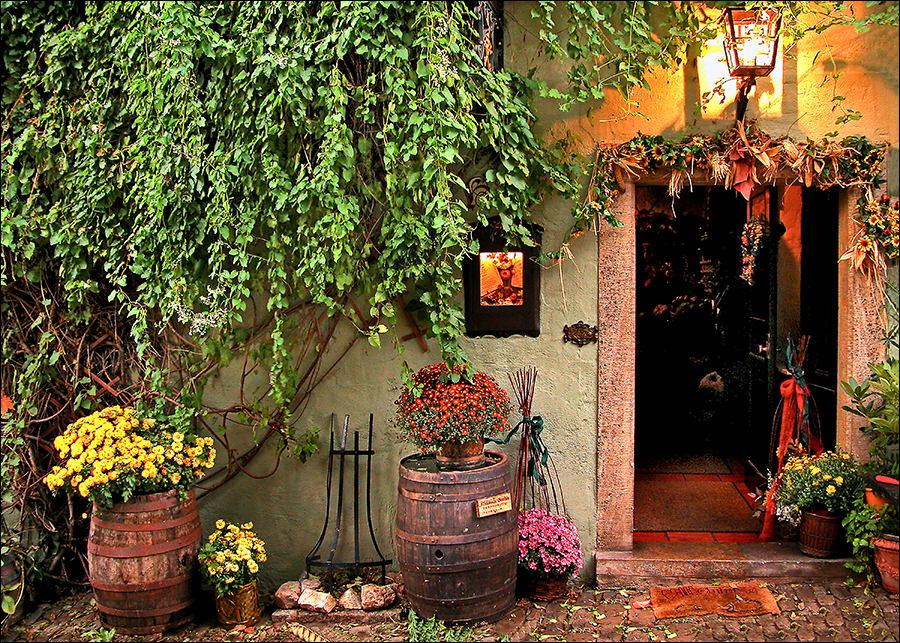 A Cozy Place.jpg