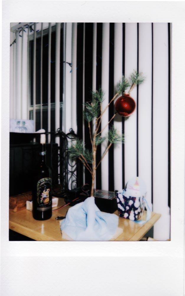 My Tree. Taken with Instax Mini. Go Analog!