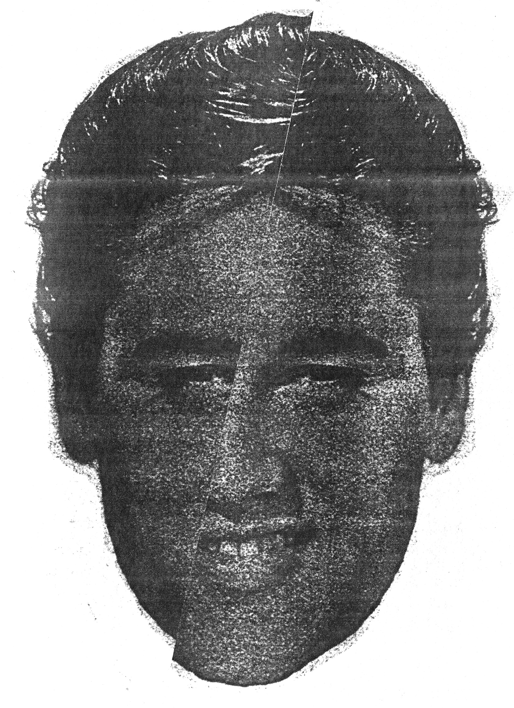 Elvis Photocopy Collage Portrait Small.jpg