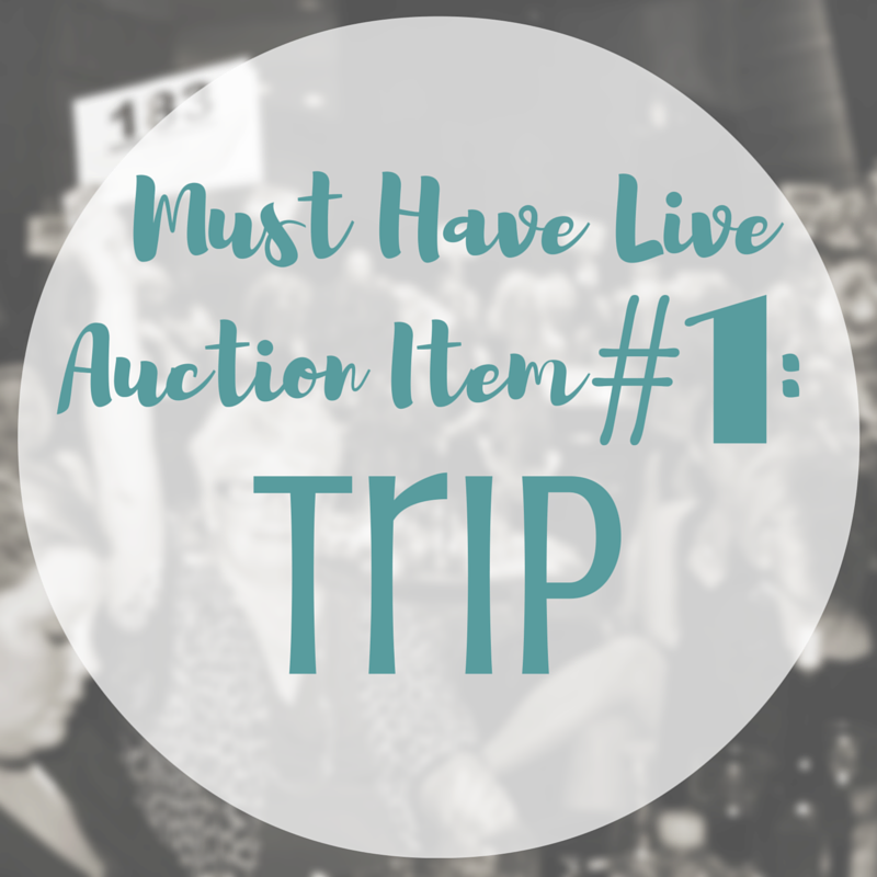Include a Trip as a part of your live auction | SK Benefit Auctions