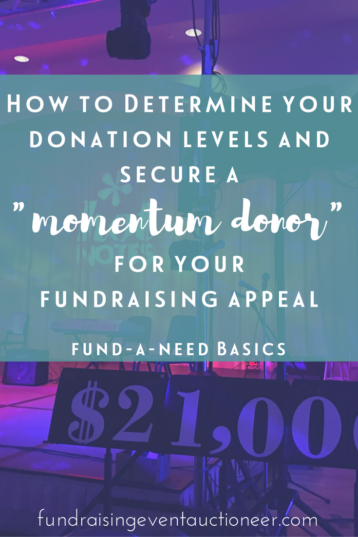 "Fund-A-Need Basics: How to determine your donation levels and secure a ""momentum donor"" for your fundraising appeal 