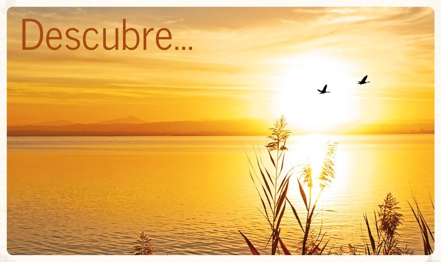 Cecura_ImagenSuperior_Slider_002.jpg