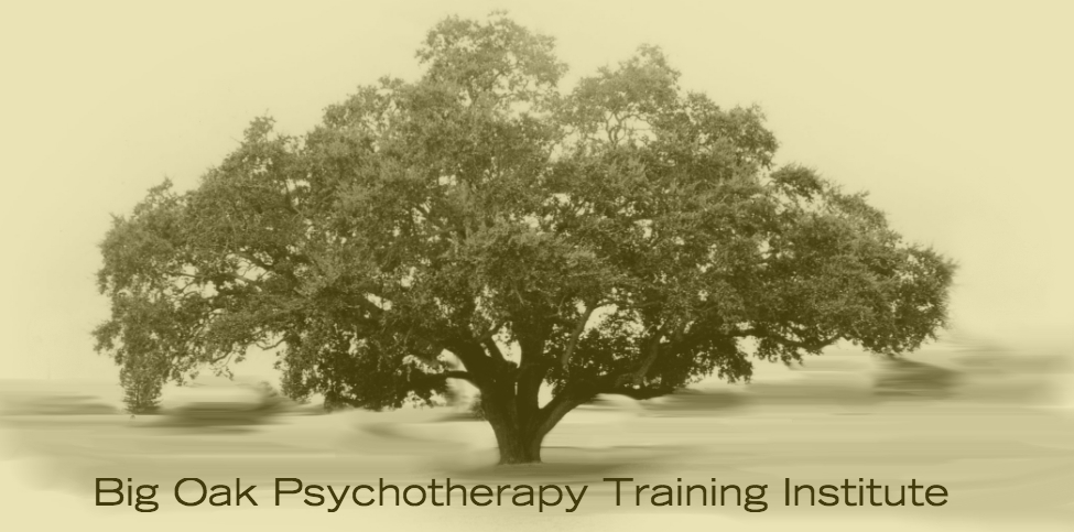 Big Oak institute was developed by Dr. Karen Alter-Reid to bring EMDRIA-approvedtrainings, integrative psychotherapy workshops and trauma training to clinicians in the Northeast and the Tri-State area. Big Oak also provides training tofirst responder organizations and local community mental health associations.