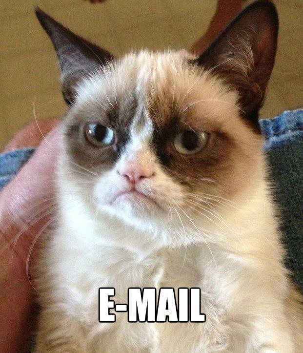 The Grumpy Cat hates e-mail.