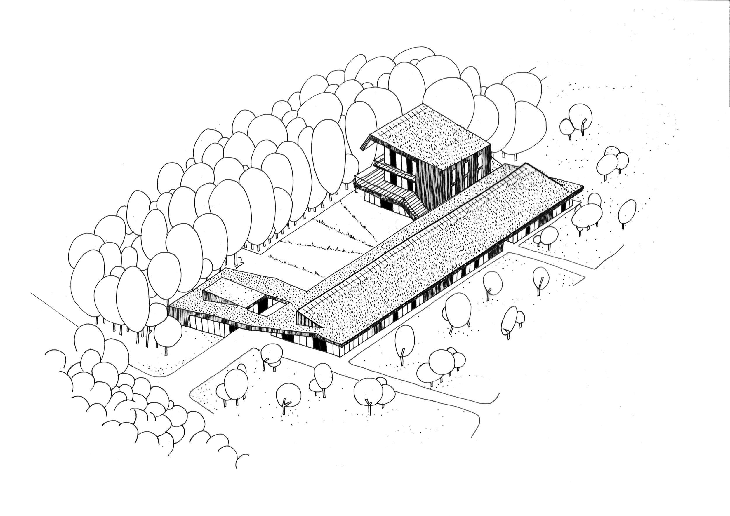 DHOOGE&MEGANCK-SHEEP-AXO.jpg