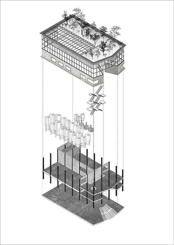 D&M-Brusselsbeerproject-A00.JPG
