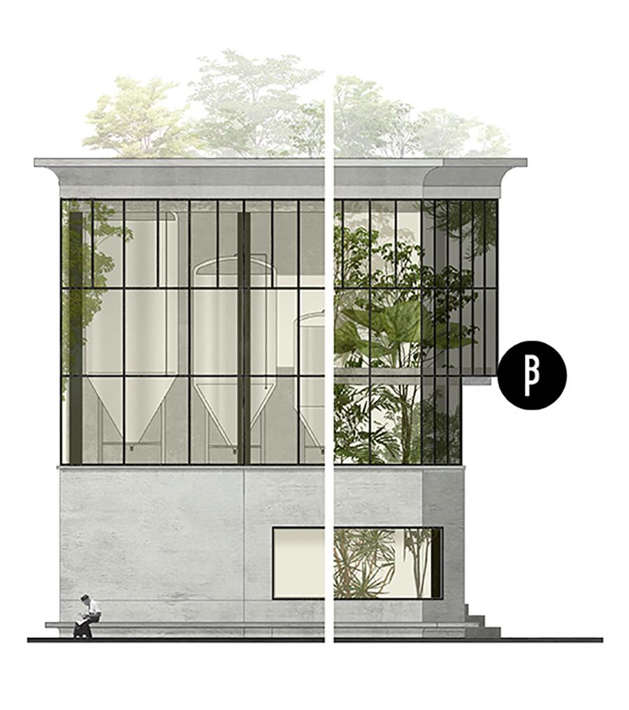 D&M-Brusselsbeerproject-F04.jpg
