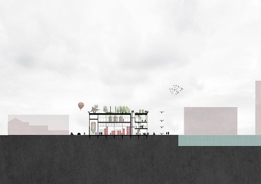 D&M-Brusselsbeerproject-S01.jpg