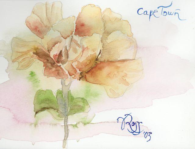 Sketchbook CapeTown Flower