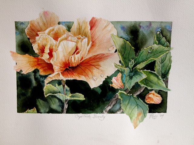 CapeTown Flower, Watercolor, ©Axully, V.N.Ross. Collected