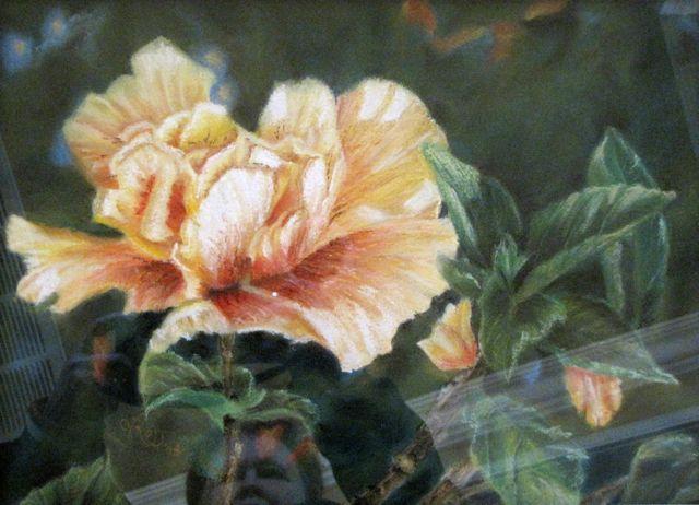 "CapeTown Flower, Pastel, 12x15"". Axully, V.N.Ross"