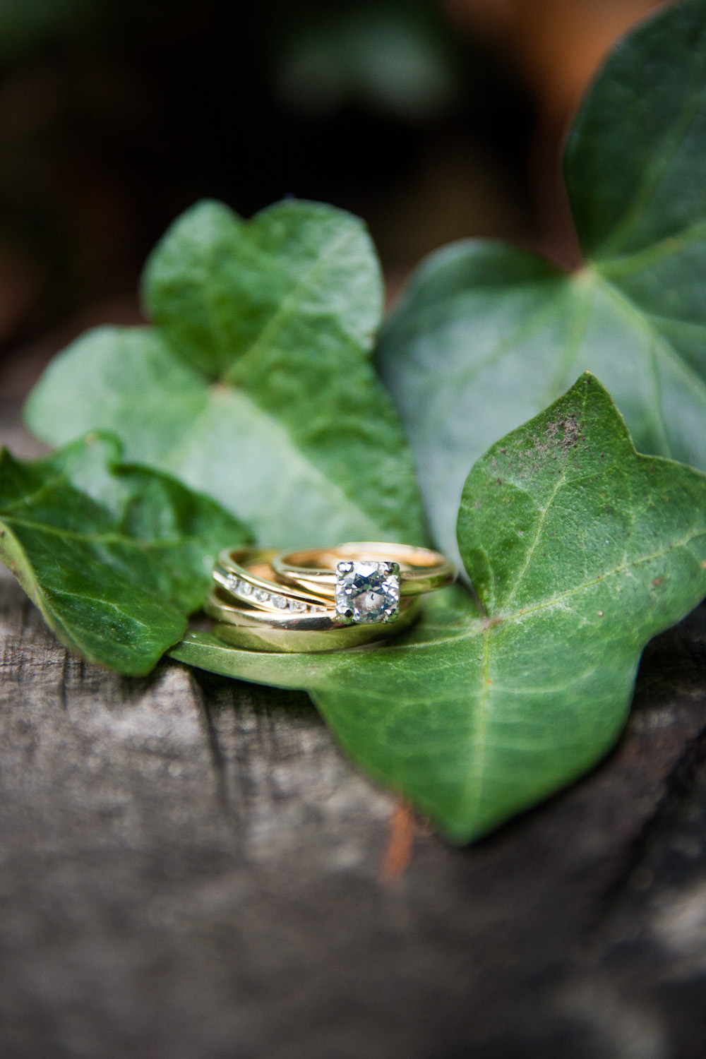 rings and ivy