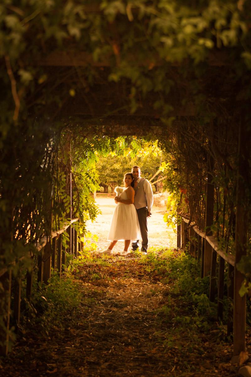 vineyard wedding modesto