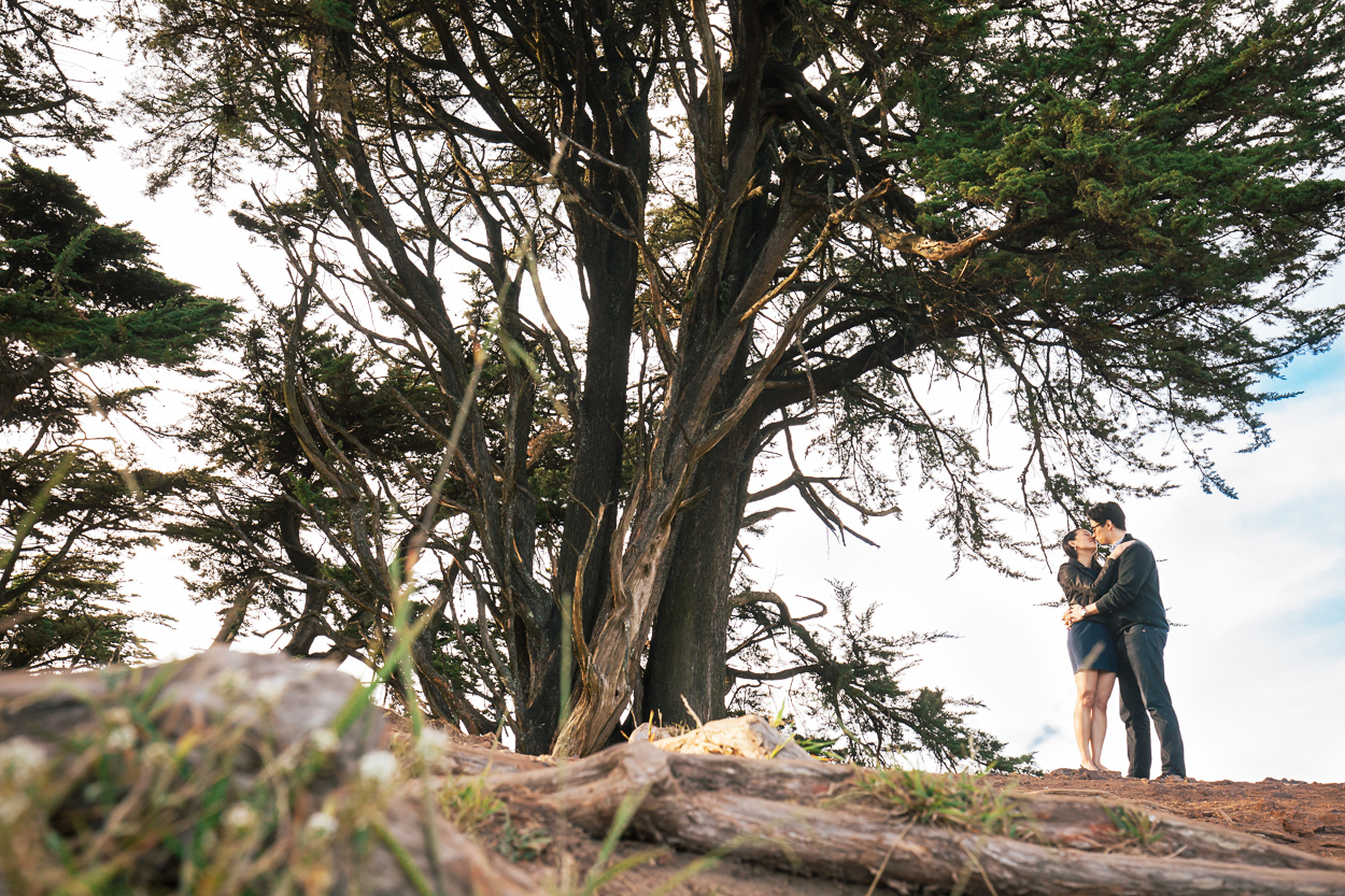 grand view park san francisco engagement